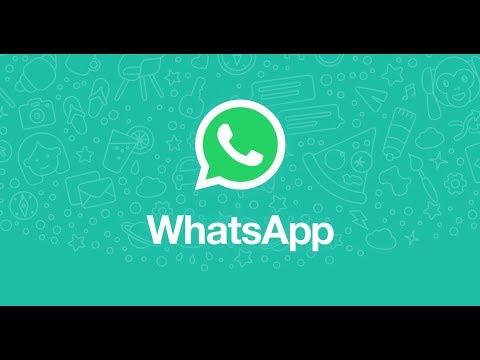 Новое обновление WhatsApp позволит передавать файлы любого формата