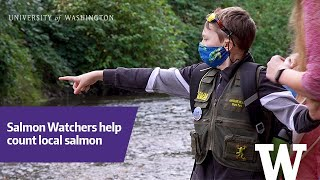 Salmon Watchers help count salmon in local streams
