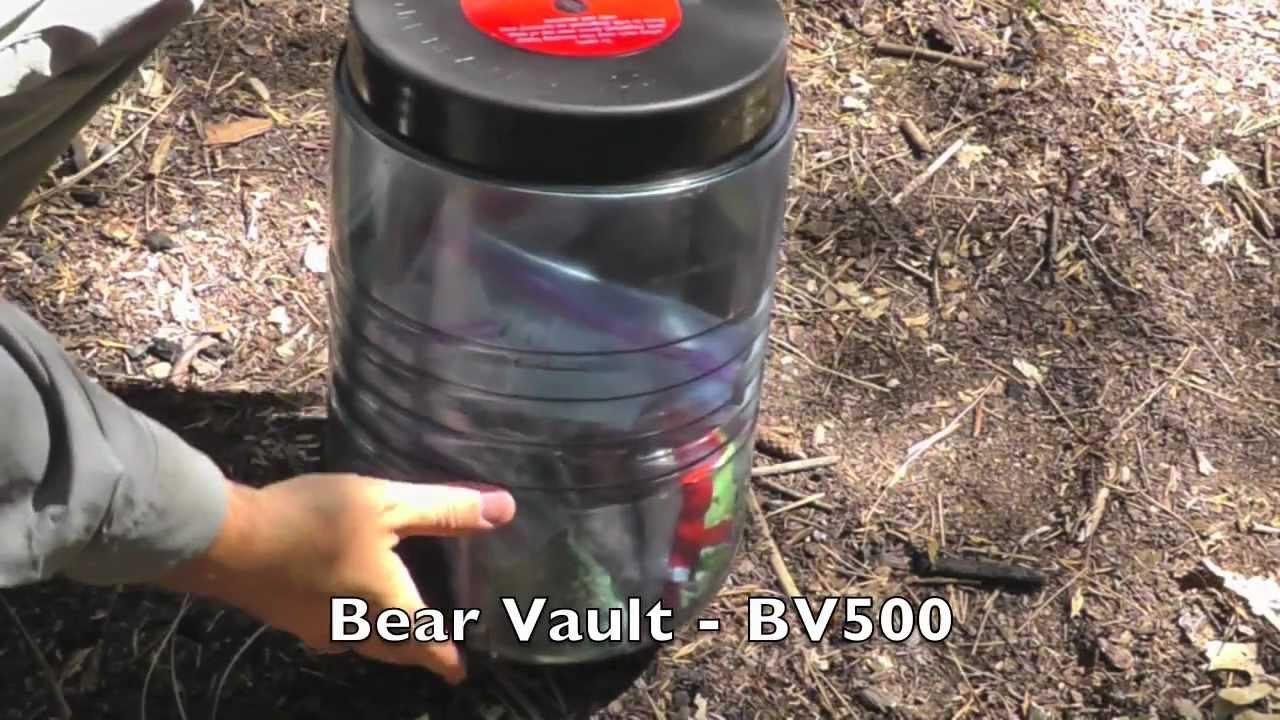 Bear Vault BV500 Demo