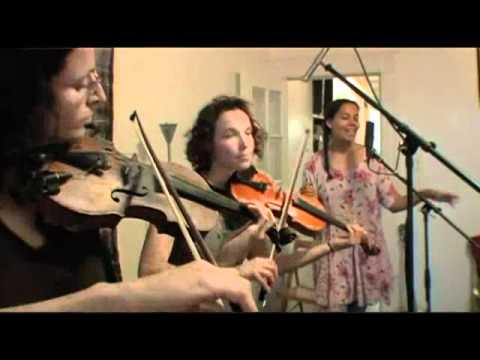 Knockin - Carolina Chocolate Drops and the Luminescent Orchestrii