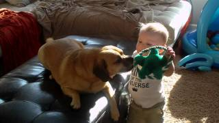 Puggle And Baby's Best Friend
