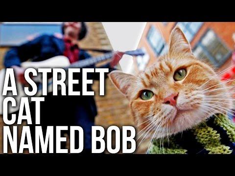 A Street Cat Named Bob | 2016