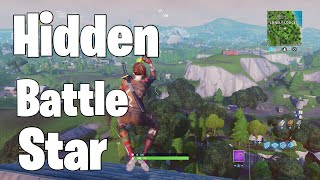 Fortnite Battle Royale Search Between a Giant Rock Man,a Crowded Tomato and an Encircled Tree Week 5