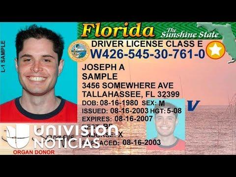 Super Martinez - Si Tu Licencia de la Florida No Tiene Esto No Podrás Viajar