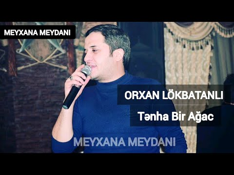 Orxan Lokbatanli Tenha Bir Agac Youtube