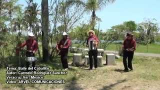 El Baile del Caballito  LOS ALEGRES DEL VALLE de Veracruz.