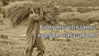 Кому мы обязаны хлебом насущным?: Talyshistan Tv 30.09.2019 News