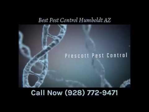 Best Pest Control Humboldt AZ