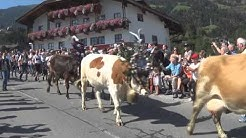 Journey Day 1: Zillertal Austria (Fügen)