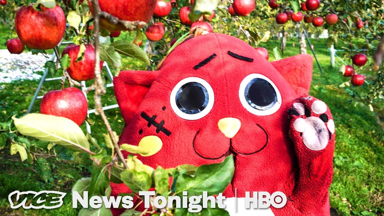 Download Nyango Star: The Heavy Metal Cat Mascot Saving A Japanese Farm (HBO)