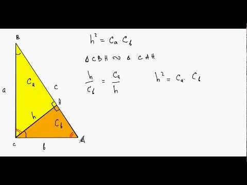 Как найти проекцию катета на гипотенузу в прямоугольном треугольнике
