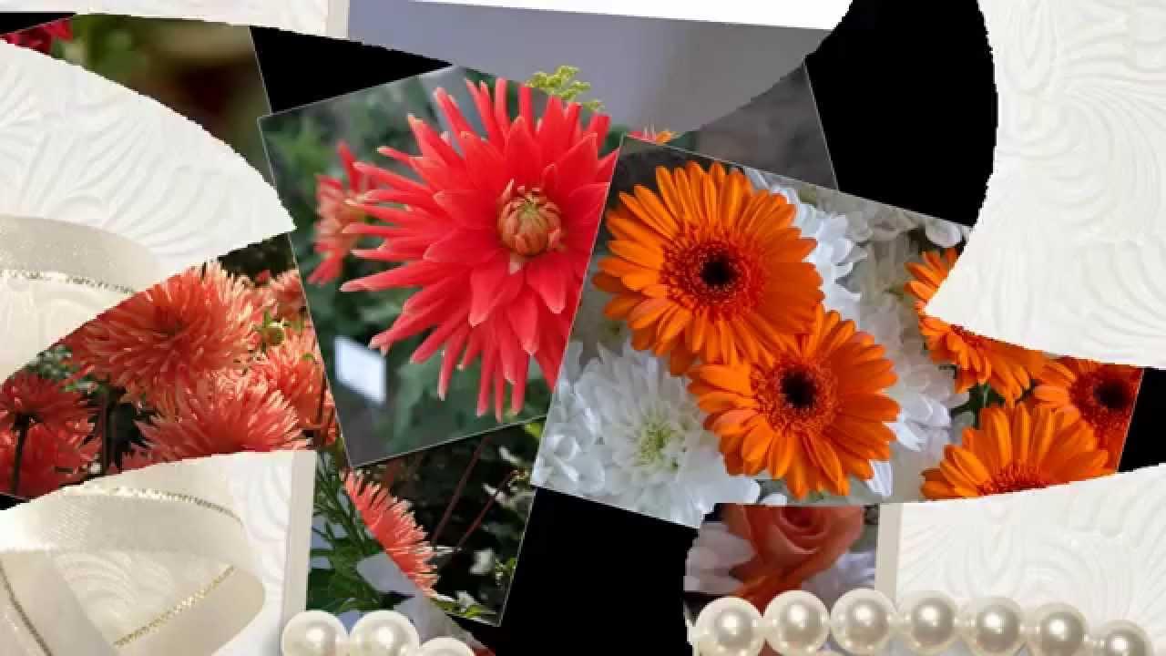 презентация картинки на тему цветы