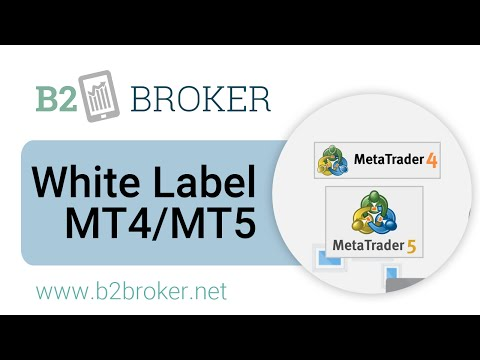 White Label MetaTrader4 and MetaTrader5 :: B2Broker 📈 Liquidity and Forex Tech Provider