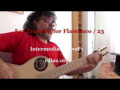 Ear training (23 Whole tone scale) in modern flamenco guitar /Learn Paco de Lucia´s Style/Ruben Diaz
