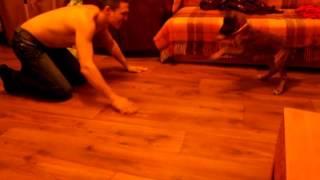 Чичолина играет в большую собаку