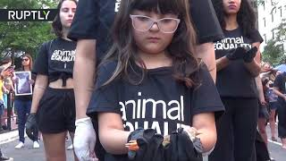Animal activists get emotional over carcasses at protest in Brazil