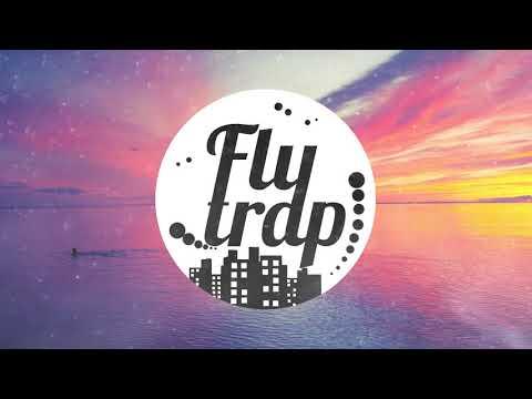 Billie Eilish - COPYCAT (DJ FlyTrap Remix)