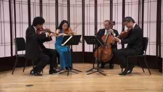 JOHANNES STRING QUARTET - Beethoven Op 59 No 1, Allegro