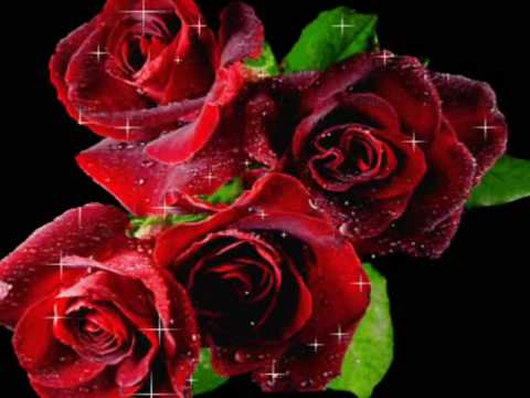 Ian Raiburg-Cumpăraţi flori (Buy flowers)