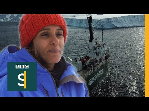Marriage? Not me, I'm off to Antarctica (FULL FILM) - BBC Stories