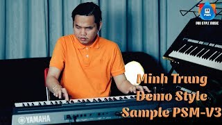 demo-style-cp-nht-32019-sample-psm-v3-minh-trung-phn-2