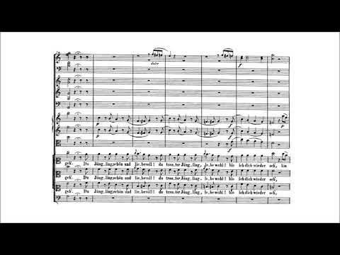 Wolfgang Amadeus Mozart – Die Zauberflöte (The Magic Flute), K. 620 {Overture, Act I} [With score]