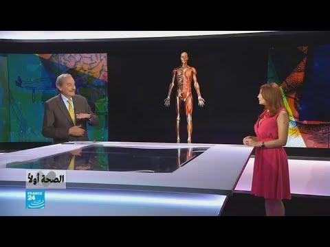 لماذا تصيب هشاشة العظام النساء أكثر من الرجال؟