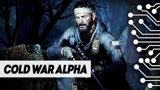 УЧАСТВУЕМ В АЛЬФЕ COD BLACK OPS COLD WAR на PS4