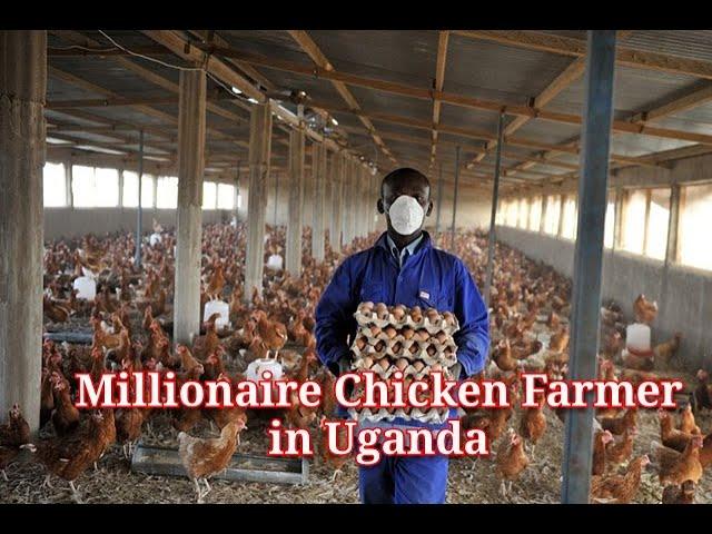 MILLIONAIRE Chicken Farmer in Uganda PART 1