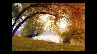 C'est l'automne - Jacky Galou