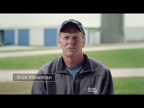 Iowa Cattle Farmers: Plowman Farms, Inc.