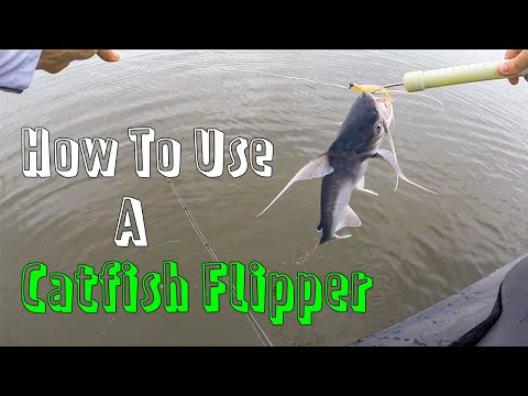 How To Use A Catfish Flipper For Gafftop & Hardhead Catfish