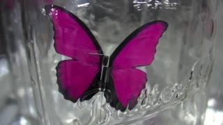 Weird Japanese Toys - Robot Butterfly!!