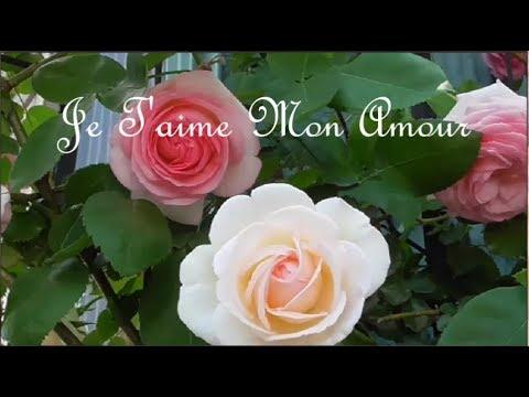 Je Taime Mon Amour Claudia Jung Richard Clayderman