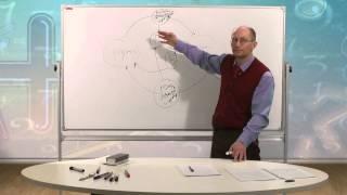 видео Двухсекторная модель кругооборота
