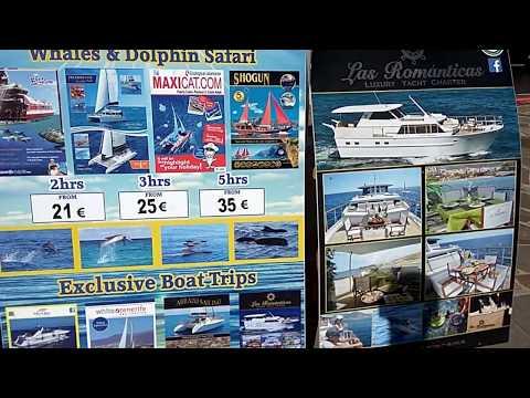Цены на экскурсии в Коста Адехе Тенерифе. Достопримечательности Канарских островов в Адехе