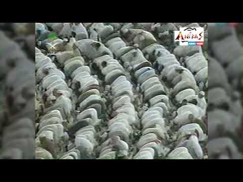 দুনিয়া আর নয় সাদাসিধা।। আসলাম হাবিব ।। Bangla gojol Duniya ar noy sada by Aslam Habib