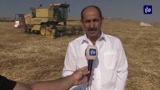 مزارعو القمح في إربد يطالبون بتذليل عقبات القطاع (20/7/2019)