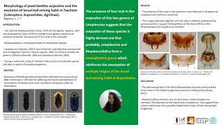 SBE meeting 2021's poster presentations: Migliore: Morphology of jewel beetles