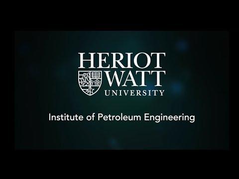Institute of Petroleum Engineering