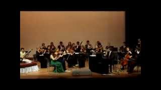 Salzburg Youth Chamber Orchestra performing Mozart and Indian devotional song in Delhi, India.