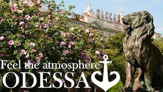 Favorite City Odessa, Ukraine | Любимый город Одесса
