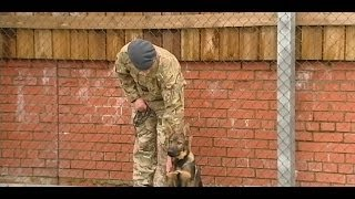 Military Working Dog Training Centre Opened By The Princess Royal 28.10.13