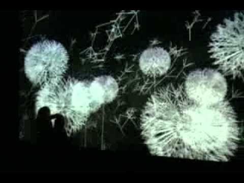 "Pissenlits, E.Couchot, M. Bret (1988-2005), exposition ""O"" Rurart (2008)"