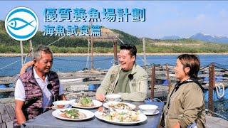 優質養魚場計劃 – 海魚試食篇:同麥包試食魚排即撈優質魚