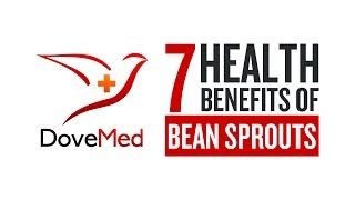 7 Health Benefits Of Bean Sprouts