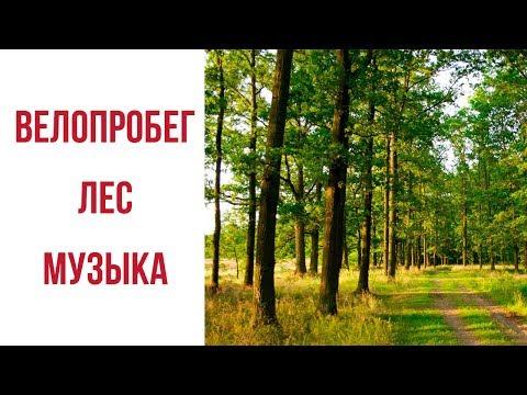 - информационный портал Дятловского района