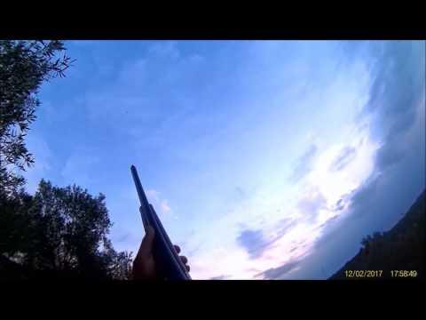 Karatavuk ve Trakus (Zubban,Cubbal) Geçit Avı Önleme Tekniği