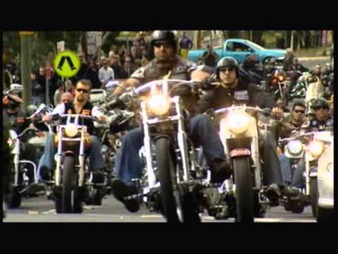 Download Bikies- Brothers in Arms  2 of 5