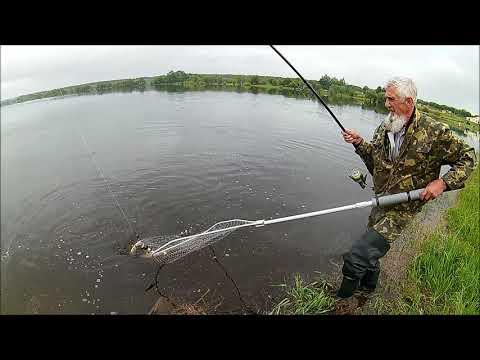 Удачная рыбалка на толстолобика.  Фитопланктон в действии.